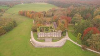 Curraghchase in Autumn