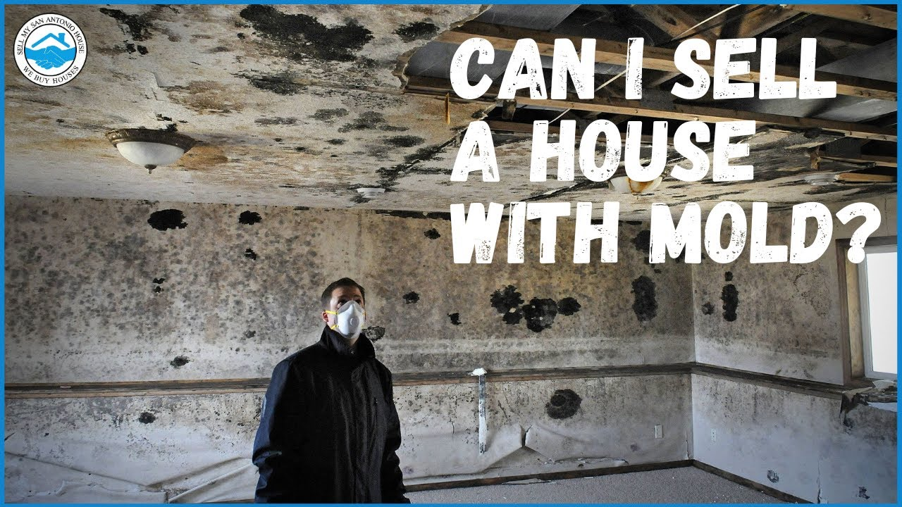 How to Sell A House With Mold | Sell My San Antonio House