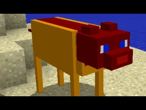 C418- Cat playing over cursed images of cats