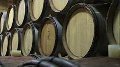 Holloran Vineyard Wines