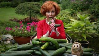 Marijke Helwegen ontspant met komkommers