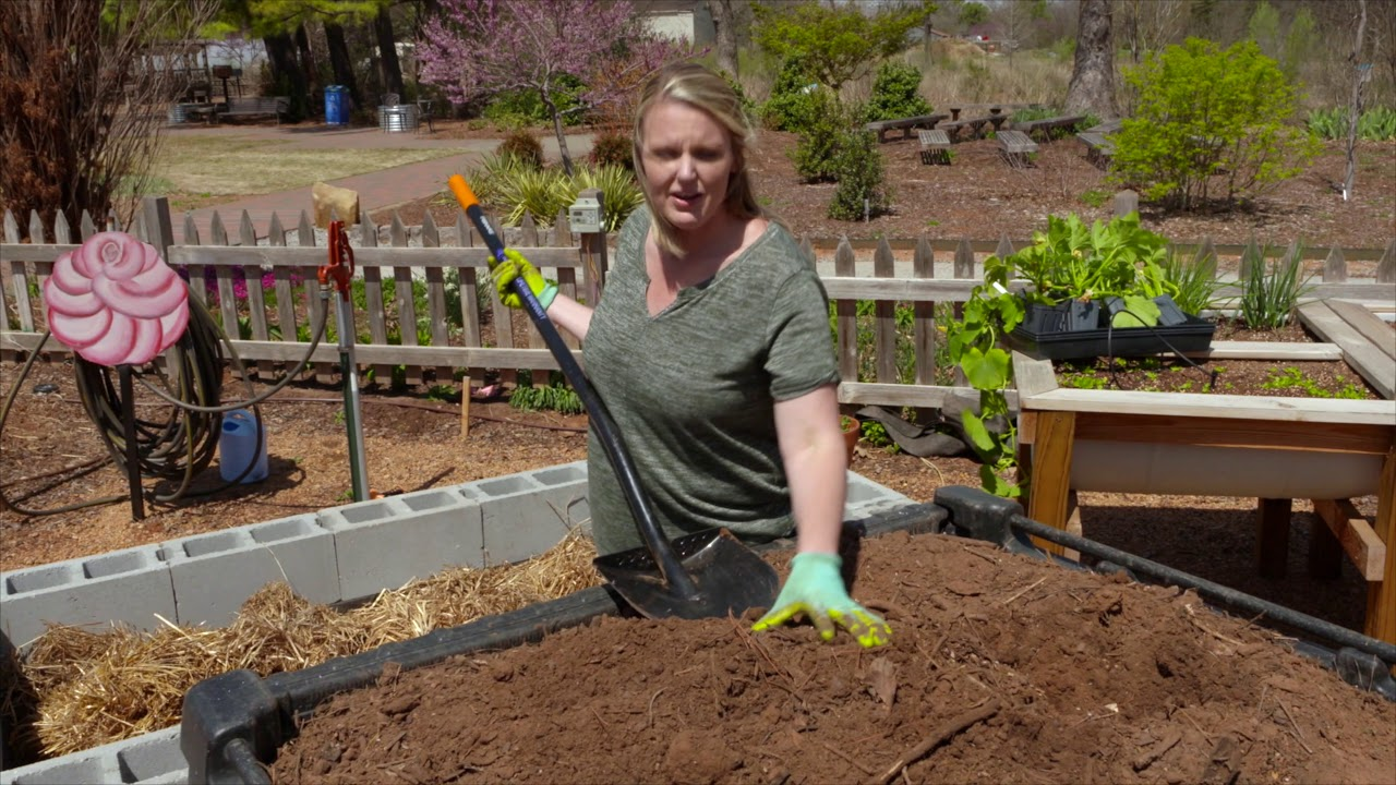 Building a Cinderblock Raised Bed and Planting Squash - YouTube