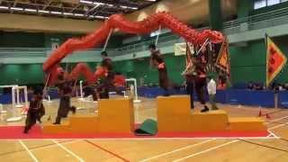第6屆全港公開技能舞龍錦標賽 青年組 障礙龍 6th HK