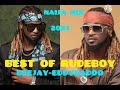 Gambar cover Best of RudeBoy P SQUARE king Rudy ft DEEJAY EDDYBADOO