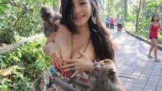 Download Mp3 Lucu Banget Mau Ngerjain Cewek, Eh Malah Dikerjain