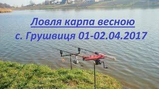 Ловля карпа весною по холодній воді с. Грушвиця 01-02.04.2017.