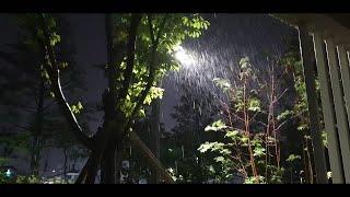 【8시간】 가로등과 나뭇잎을 두드리는 빗소리, 공원, …
