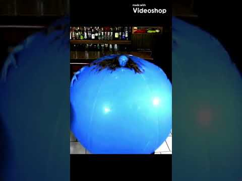 Blueberry Inflation Highlights