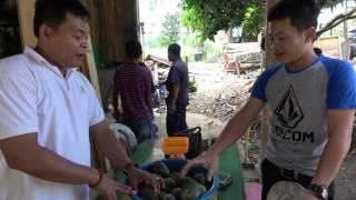 Download Video Jawa vs Minang ( Berdagang ) MP3 3GP MP4