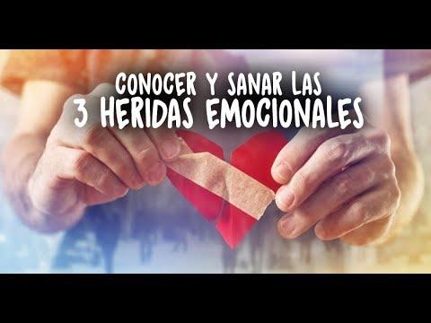 CODIGO DE NELSON EL BRADLEY EMOCION LA PDF