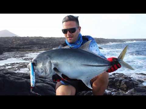 INSHORE EXPERIENCE FISHING CAPE VERDE SAL ISLAND