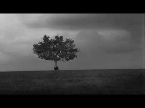 Der Blaue Reiter ~ Words of Silence