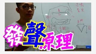 《歌唱教本》(3) - 發聲原理 /歌唱教學/歌唱學習/聲帶/聲門/喉頭