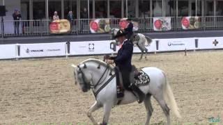 Андалузские лошади на Красной площади 07.09.2015 - Выездка, танец-квартет