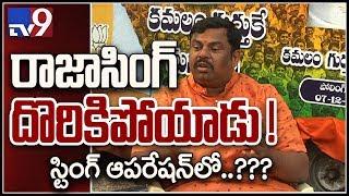 Pehchan Kaun : రాజా సింగ్ ముసుగు వీరుడా ? - TV9 String Operation