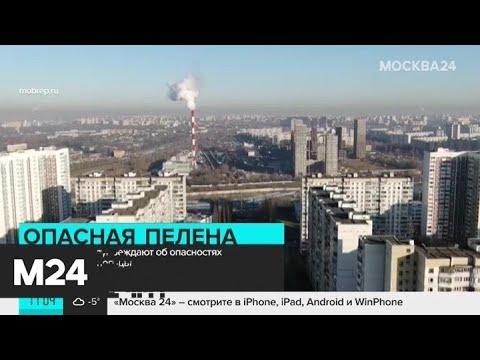 """Москвичей предупредили об опасностях """"марсианской"""" погоды - Москва 24"""