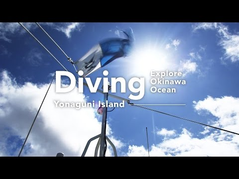 Explore Okinawa Ocean: Diving interview