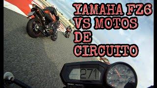 YAMAHA FZ6 CONTRA MOTOS de CIRCUITO