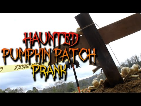 Haunted Pumpkin Patch!