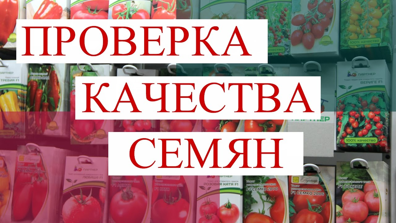 "Анонс Нового Проекта ""Проверка качества семян""."