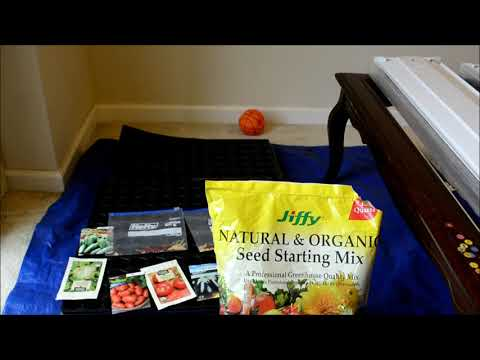 Part 2 Organic Gardening in Mid Atlantic states: Seed Germination continued
