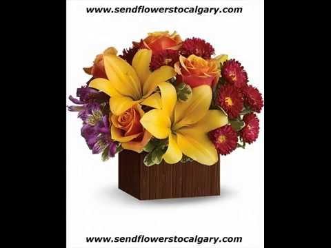 Envoyer des fleurs de Québec à Calgary en Alberta
