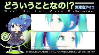 【UTAU-Synth】What Do You Mean!?【Kikyuune Aiko】