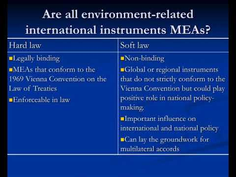 Understanding Multilateral Environmental Agreements Youtube
