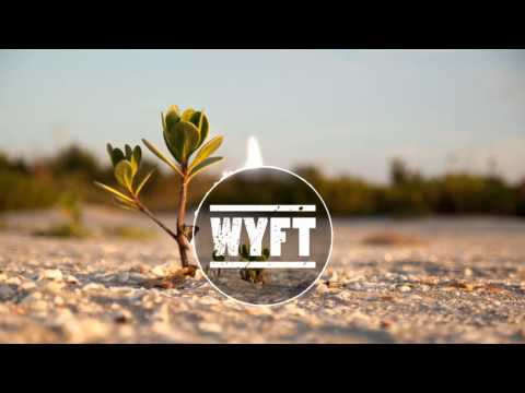 Lauv - Reforget (Milk N Cooks Remix) (Tropical House)