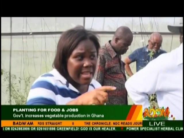 Planting For Food & Jobs - Badwam on Adom TV (13-12-18)