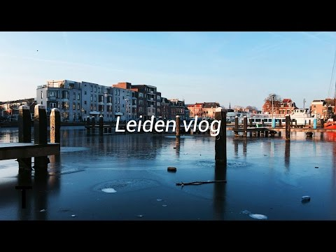 LEIDEN VLOG | 🇳🇱 Netherlands part 2 🇳🇱 | Travel |faabyy21