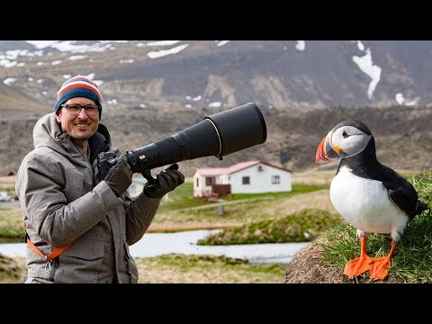 Bird Photography in Iceland 🦅🐦📷 Whats in my Bag