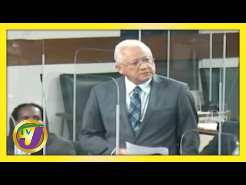 Min. Delroy Chuck Condemns Opposition Request | TVJ News