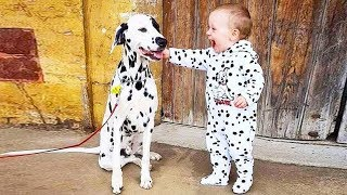 Baby Love Dog When The First Time They Meet | Dog love baby