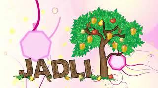 Fruit Pulp and Concentrates, IQF,  Pickles, Jam, Sauces- Jadli Foods  Mansa