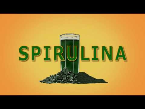 The Spirulina Grow Co intro video.
