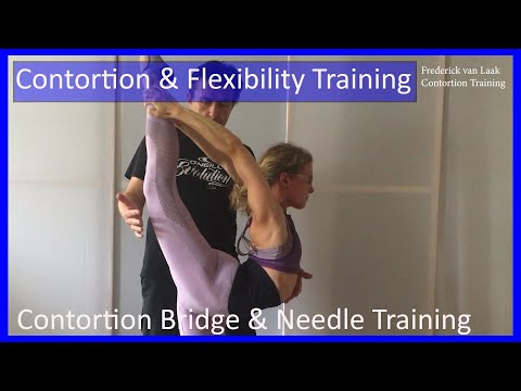 18 Frederick van Laak Contortion Training: Bridge and Needle Training - Tutorial 18 thumbnail