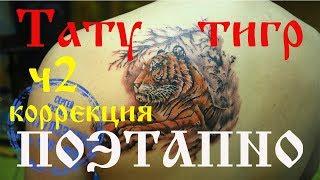 Тату Тигр.  Tattoo tiger.  Поэтапно . часть 2 Череповец