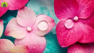 """""""Pure Healing Music To Soothe Your Mind"""" Stress Relief Meditation Music, Relaxing Sleep Music"""