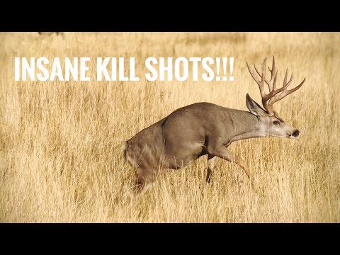 TOP 44 BEST HUNTING KILL SHOTS!! BOW AND RIFLE!