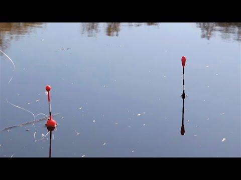 РАДИ ТАКИХ ПОКЛЕВОК СТОИЛО СЮДА ЕХАТЬ! Рыбалка на поплавок весной 2020!