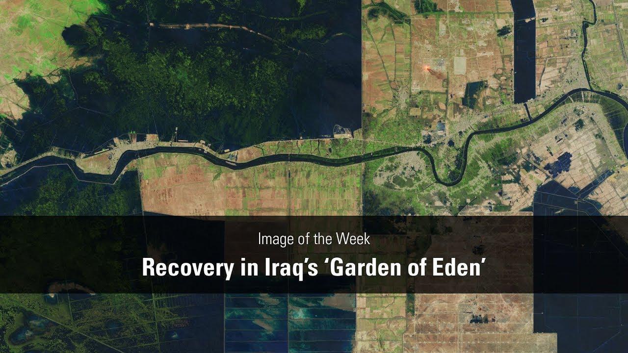 Recovery in Iraq's 'Garden of Eden'