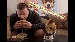 Grand Mac Challenge Dog Against Man!! Did We Beat Matt Stonie?
