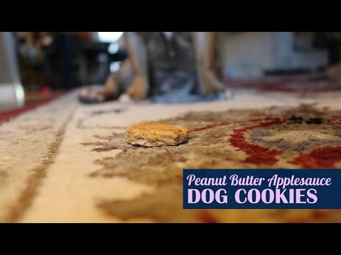 Peanut Butter Applesauce Dog Cookies - How To Make Simple Treats You And Your Dog Can Both Enjoy!