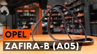 How to change serpentine belt / v-ribbed belt on OPEL ZAFIRA-B 2 (A05) [TUTORIAL AUTODOC]