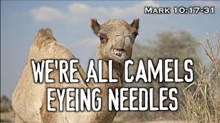 We're All Camels Eyeing Needles (Mark 10:17-31)