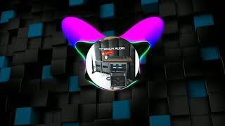 Musik Buat Cek Sound Dangdut Bass Horeg (NCS MUSIK)