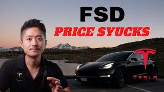 WRONG PRICE! Tesla FSD subscription