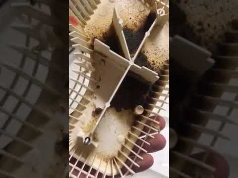How to clean smelly nasty dishwasher warning
