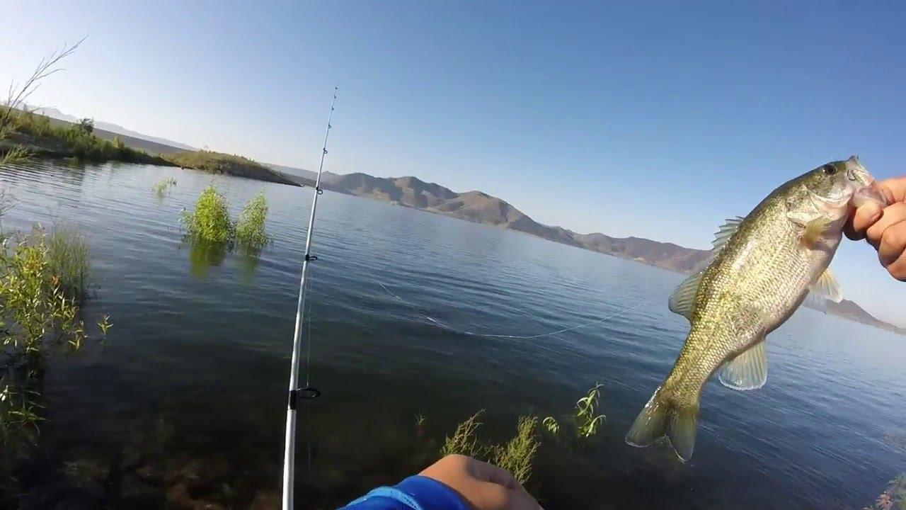 Shore fishing at diamond valley lake youtube for Diamond valley fishing report